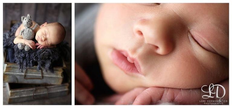 lori dorman photography-newborn photography-newborn photographer-baby photography-baby photographer-Los Angeles newborn photographer_0264.jpg