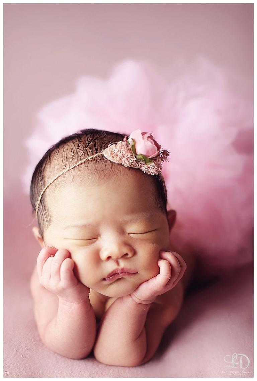 Newborn Y Photography