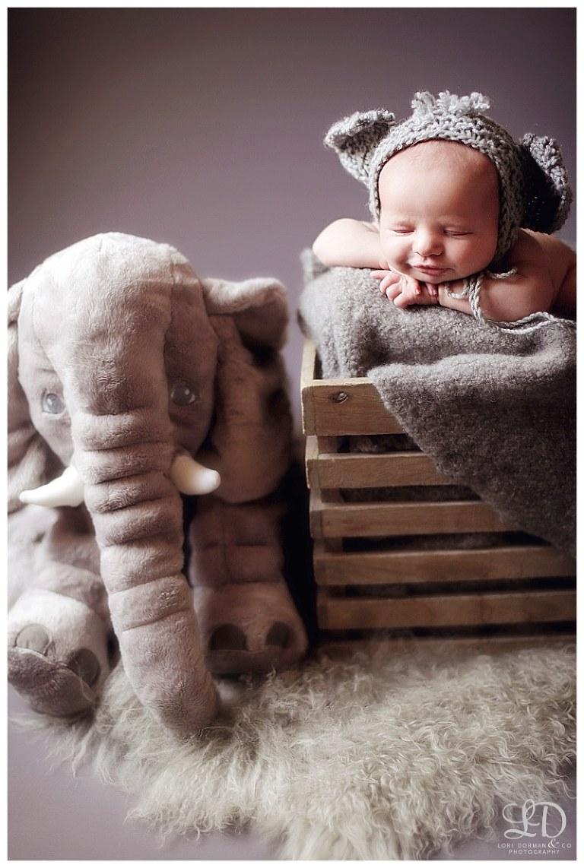 beautiful newborn photoshoot-lori dorman photography-professional photographer-baby photographer_1464.jpg