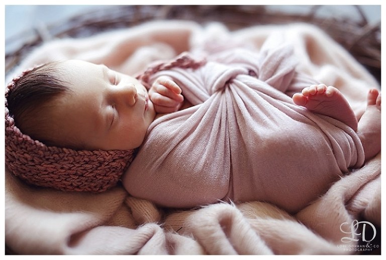 newborn photoshoot-home newborn-lori dorman photography-family photography-children photography_1100.jpg