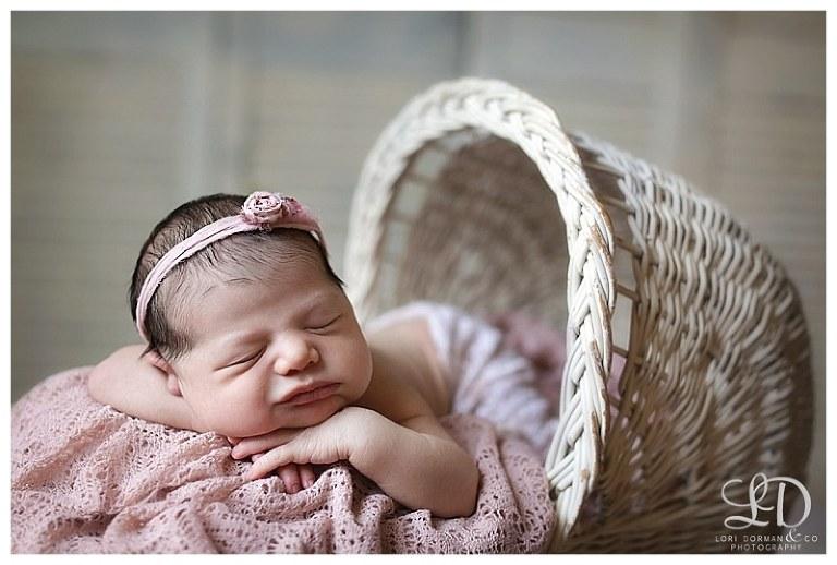 sweet newborn photoshoot-baby girl newborn-baby photographer-professional photographer-lori dorman photography_1973.jpg