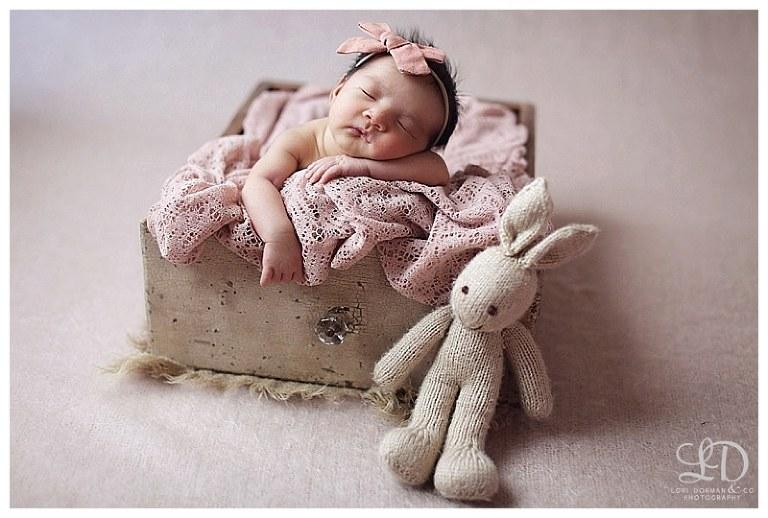 sweet newborn photoshoot-professional photographer-lori dorman photography_1188.jpg